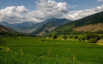 Researchers predict sweeping vegetation changes in Kashmir Himalayas due to climate change (Image by Sandeepachetan.com)