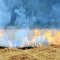 Indian INDCs do not address soot emissions