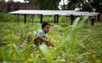 India needs a trillion dollars for adaptation