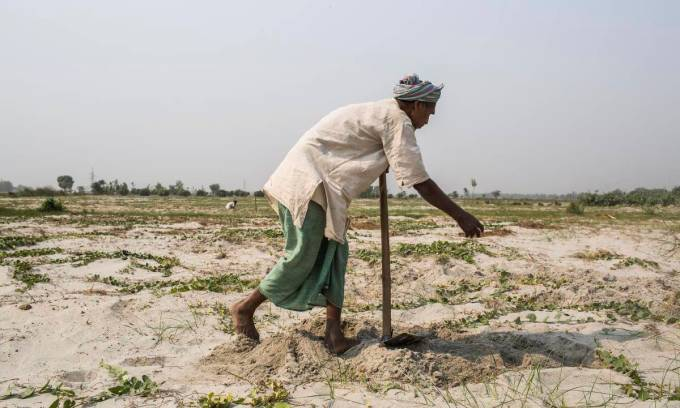 In Sunsari, Nepal, close to the border with India, a farmer cultivates land that was submerged in sand during the Koshi flood of 2008 [all photos by Nabin Baral]
