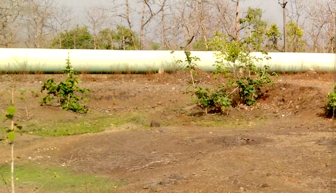 The concrete pipe carrying water to the Shipra from the Narmada. (Photo by Soumya Sarkar)