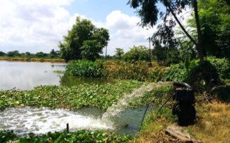Green tribunal raises red flag over Kolkata wetlands
