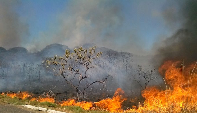 Carbon emitted from forest fires will make Brazil's emissions reductions plans harder to achieve. (Photo by José Cruz/ABr )