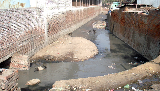 Drain carrying toxic effluents to the Ganga in Kanpur. (Photo by Juhi Chaudhary)