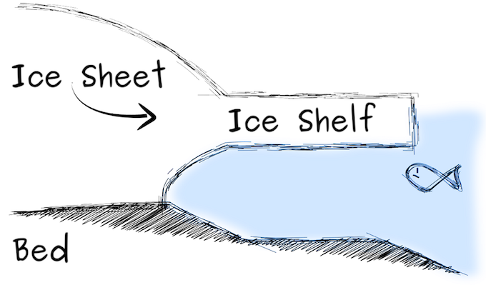 This is how an ice shelf looks without an ice rise [image by Reinhard Drews]