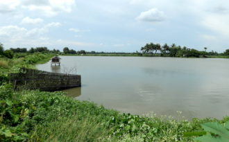 East Kolkata Wetlands face new threats by government