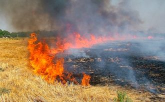 India's farm fires poison air over South Asia