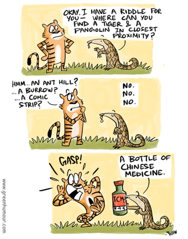 Tigers and Pangolins (By Rohan Chakravarty/ Green Humour)