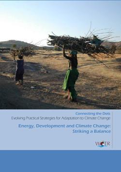 Energy, development and climate change: Striking a balance