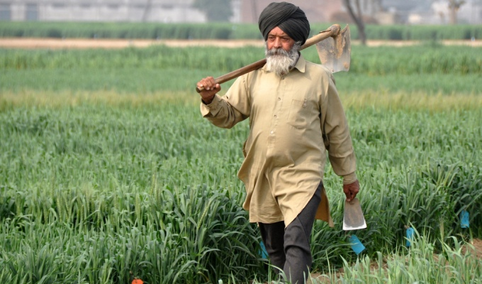 Farmers in Climate- smart villages in Haryana have adopted climate-smart agriculture to increase adaptation and build resilience to climate change. (Image by P Casier/CGIAR)