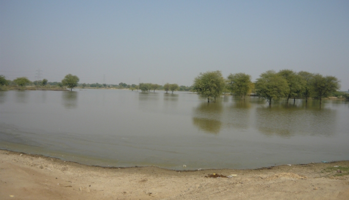Ram sagar, a pond revived by villagers, has solved the problem of droughts in Bapu Gaon.