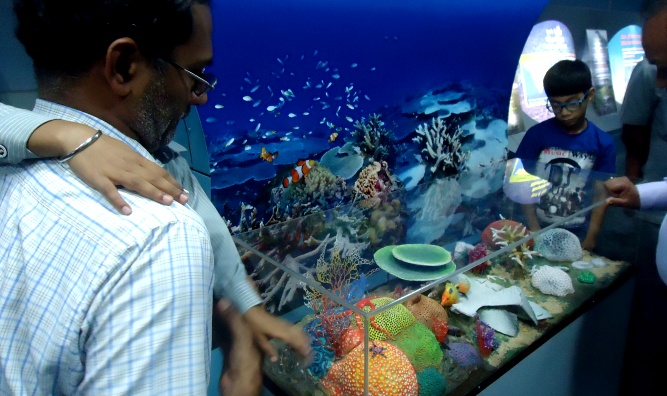 An exhibition section showing bleaching of corals due to warming oceans (Image by Juhi Chaudhary)