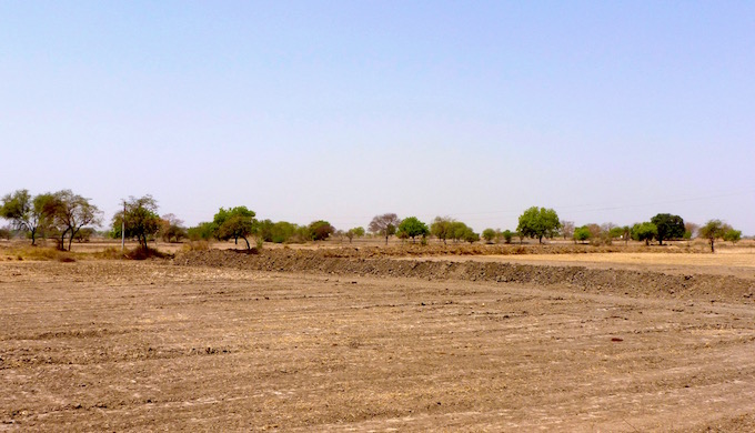 An agricultural field has been embanked in the Noner mouza of Datia district to catch the rain where it falls.