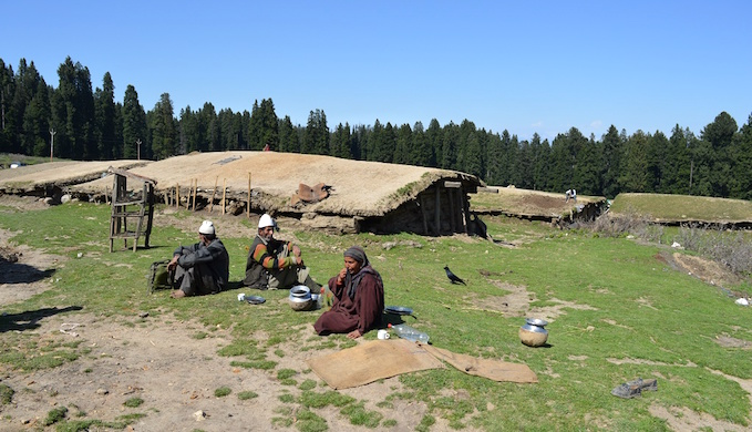 Kothas serve as shelters for Gujjars in highland pastures. (Photo by Athar Parvaiz)
