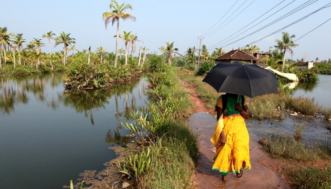 A flooded village path in Munroe Thuruthu. (Photo by Ajith Lawrence)