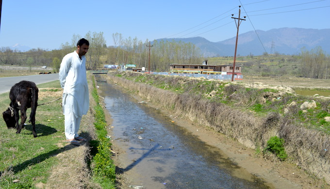 No water for Kashmir's rice farmers