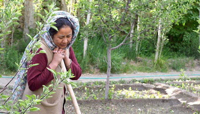 In waterless Ladakh, women show the way
