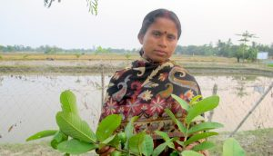 Progressive farmer Gauri Mondal has been trained in climate-resilient practices but is disappointed with the lack of state support (Photo by Dhruba Dasgupta)