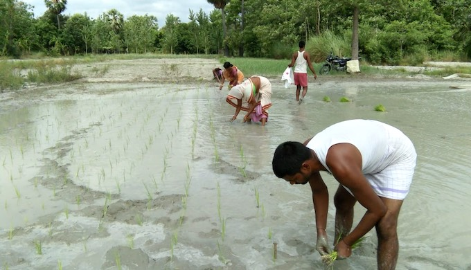 Climate change hits Bihar farmers twice this year