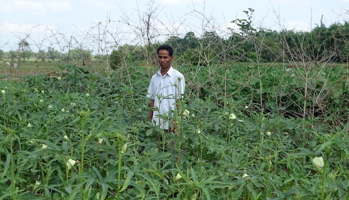 Traditional agricultural wisdom still relevant in Assam