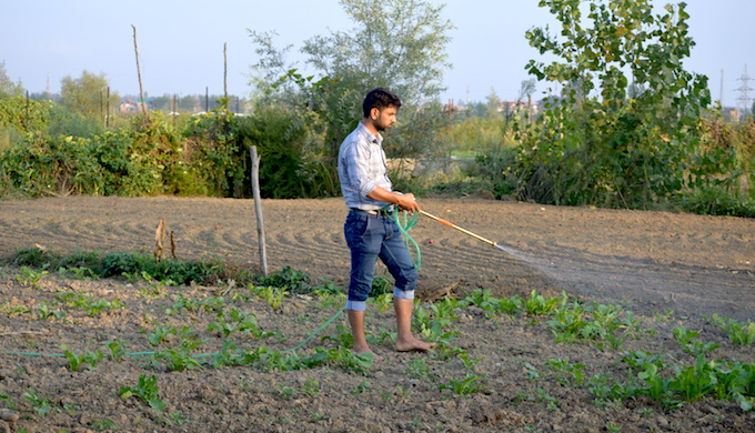 Young Kashmiri farmers turn water-wise to tackle climate change