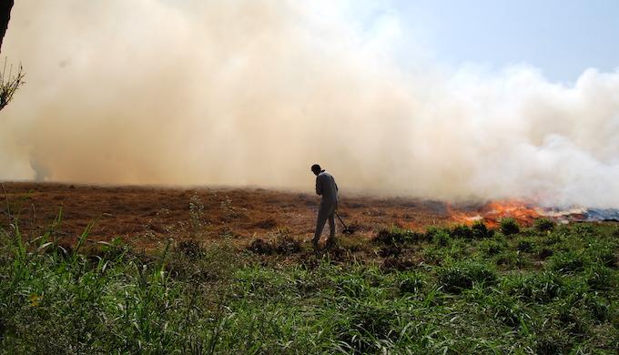 North India chokes as farmers set stubble ablaze