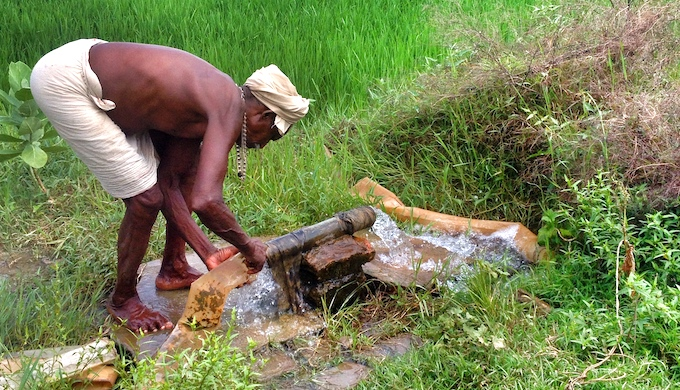 Most small and marginal farmers in Bihar cannot bear the additional cost of irrigating their fields (Photo by Santosh Singh)