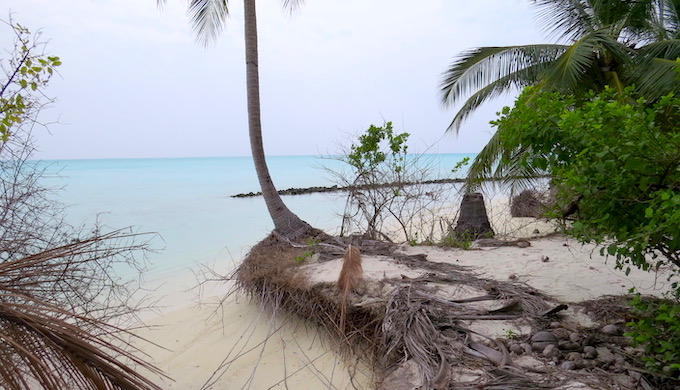 Many islands in the Lakshadweep archipelago are experiencing rapid coastal erosion (Photo by Soumya Sarkar)
