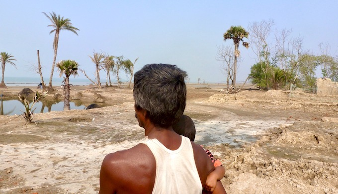 Sundarbans vulnerable to storm surges