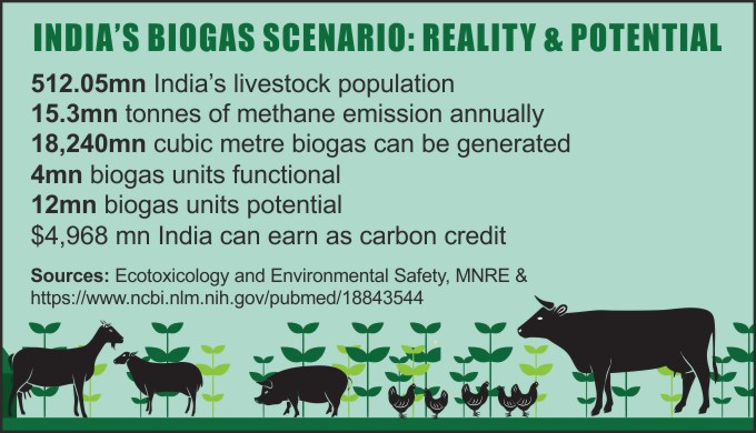 Multimedia: Biogas eases pressure on Maharashtra forests - India