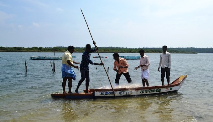 Inland fishermen out hauling fish (Photo by N. Vinoth Kumar)