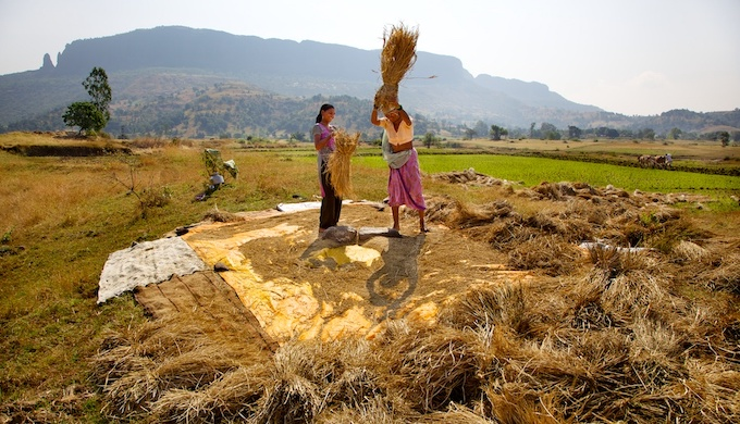 Land degradation due to climate change would result in poor harvests (Photo by Michael Foley)