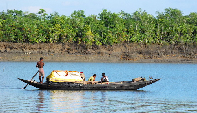 Amitav Ghosh's latest novel in centred on the Sundarbans, the world's largest mangrove forest that is facing the brunt of climate change (Photo by Sayamindu Daagupta)