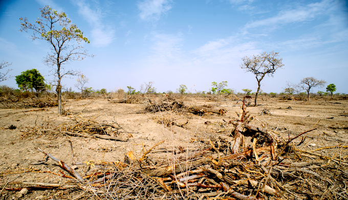 Best of 2019: Manage land better to prevent catastrophic breakdown