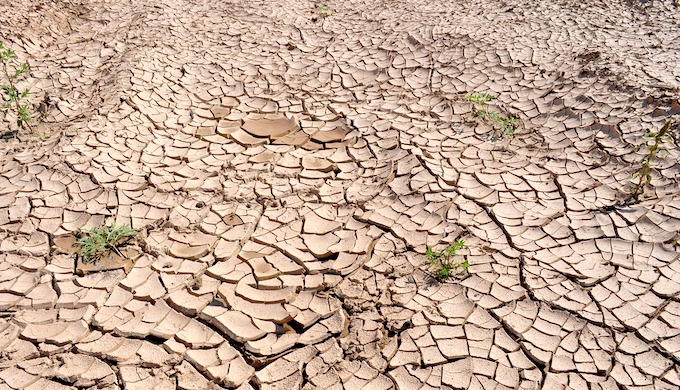 Degraded land is adding to the climate crisis (Photo by Pixabay)