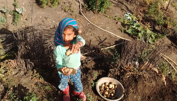 The children help in farm work (Photo by Shantanu Mundhada)