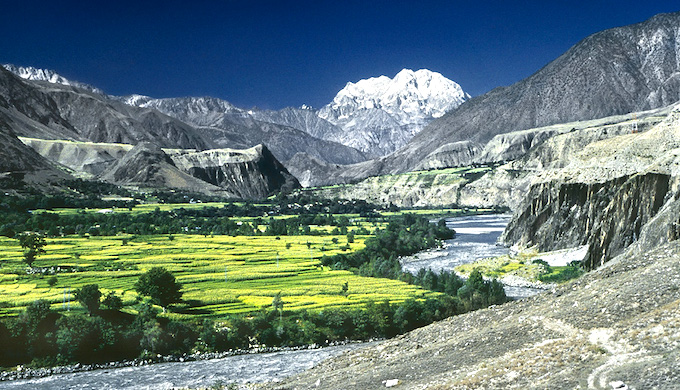 Call for organic farming in Himalayas at desertification summit