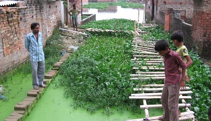 Waterlogged housing in Gorakhpur, India (Photo by Anna Brown)