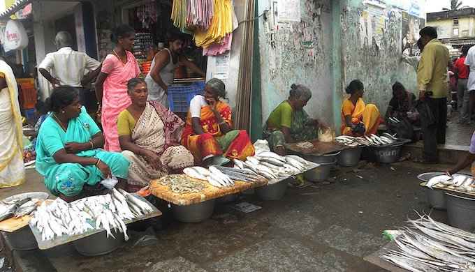 Fish vendors in Pulicat (Photo by Jency Samuel)