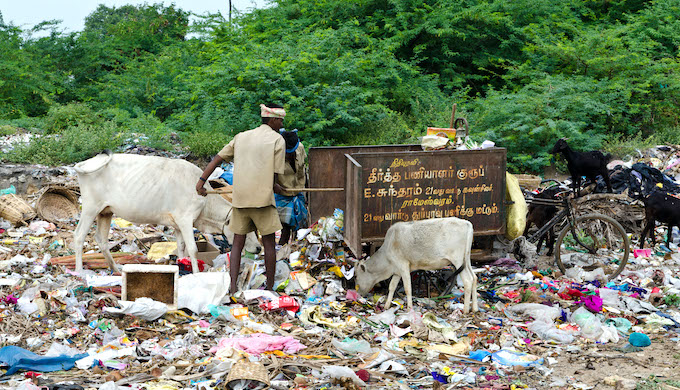 Solid waste management needs to become more efficient in India (Photo by Frank Bienewald/Alamy)