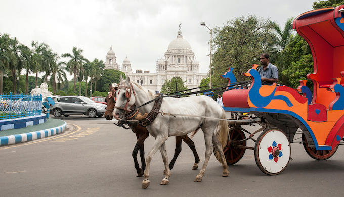 Horse carriages in Kolkata drive into the sunset