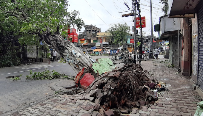 Trees uprooted by Cyclone Amphan tore down shops and telephone wires, leaving millions off the grid in Kolkata (Photo by Wikimedia Commons)