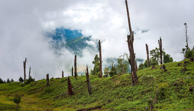 Deforestation in the Himalayas near Tawang, Arunachal Pradesh, India (Photo by Daniel J. Rao/Alamy)